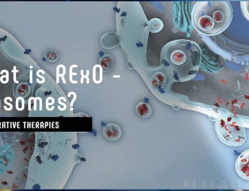 What is RExO – Exosomes?